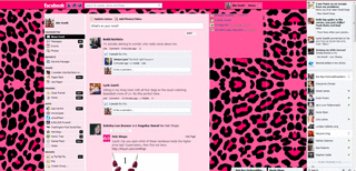 Pink Cheetah Print Facebook Theme