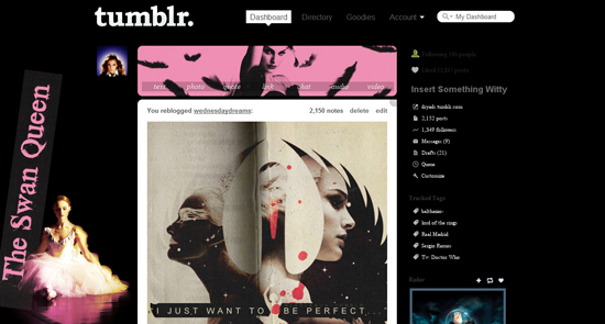 Black Swan Tumblr Dash Theme